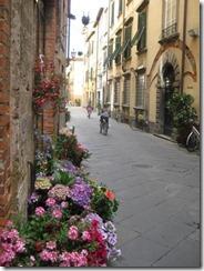 20120509 Camera Wk11B12A Pisa Lucca IMG_7134