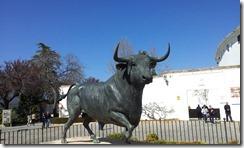 Ronda Bull 20120229_125846